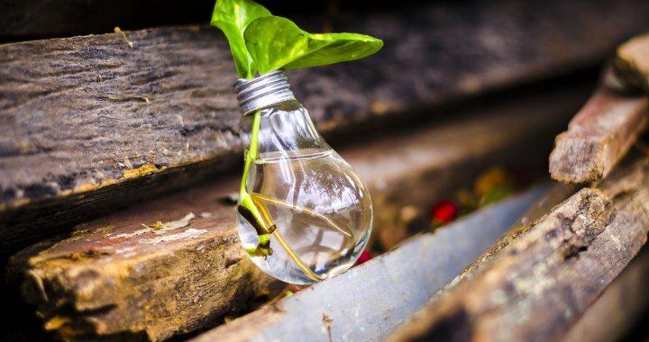Recycling bulb